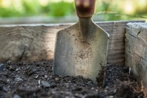 Shovel in the garden