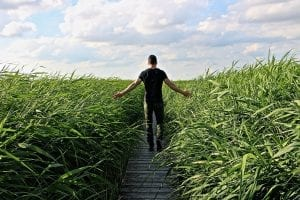 A man walking in high grass